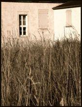 Ferme-aux-longues-herbes